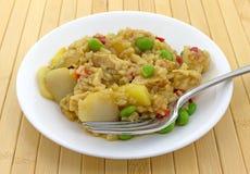 Riz avec de la farine de poulet et de légumes secs d'un plat Photos libres de droits
