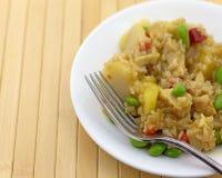 Riz avec de la farine de poulet et de légumes secs d'un plat Image stock