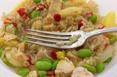 Riz avec le poulet et les légumes dans une cuvette Photographie stock libre de droits