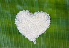 Riz blanc Image libre de droits