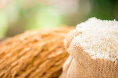 Riz blanc dans le sac à toile de jute images stock