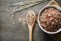 Riz brun Image libre de droits