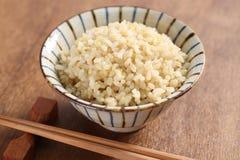 Riz brun bouilli photo libre de droits