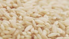 Riz brun en vrac clips vidéos