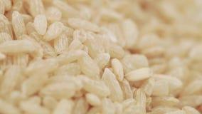 Riz brun en vrac banque de vidéos