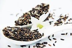 Riz brun et fleurs dans la cuillère Image stock