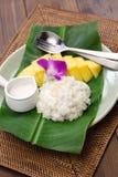 Riz collant de mangue thaïlandaise, muang de mA de niaow de khao Photographie stock