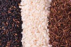Riz coloré par drapeau Photo stock