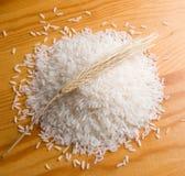 riz d'oreille Photographie stock libre de droits