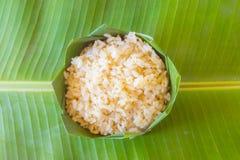 Riz de BA de GA ou riz brun germé Photos stock