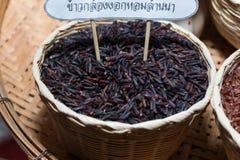 Riz de jasmin, riz brun de riz brut Photographie stock