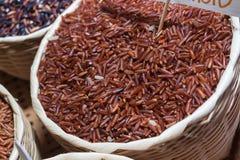 Riz de jasmin, riz brun de riz brut Image stock