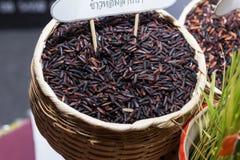 Riz de jasmin, riz brun de riz brut Images libres de droits