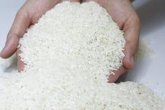 riz de main photographie stock libre de droits