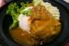 Riz de poulet Image stock