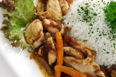 riz de viande Image stock