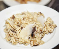 Riz et champignons de couche photo libre de droits