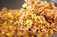 Riz frit chinois Photographie stock libre de droits