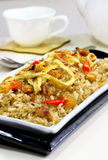 Riz frit de Balacan Image stock