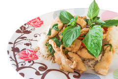 Riz frit de Basil avec le poulet sur le fond blanc image libre de droits