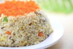 Riz frit de fruits de mer du Japon Image libre de droits