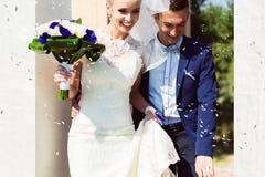 Riz heureux de ménages mariés et de vol Images stock