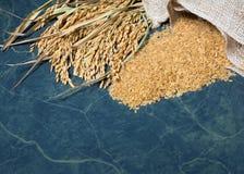 Riz naturel de transitoire et riz images libres de droits