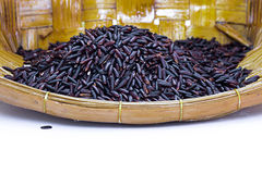 Riz noir de jasmin (baie de riz) Image libre de droits