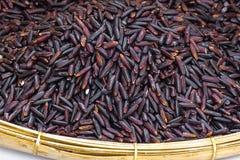 Riz noir de jasmin (baie de riz) Photos libres de droits