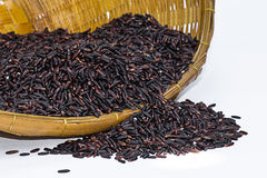 Riz noir de jasmin (baie de riz) Photo libre de droits