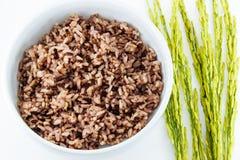 Riz noir en cuvette et riz non-décortiqué Image stock