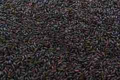 Riz noir (pour l'usage comme fond d'image ou comme texture) Photos stock
