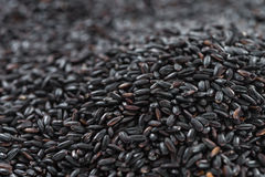 Riz noir (pour l'usage comme fond d'image ou comme texture) Photographie stock