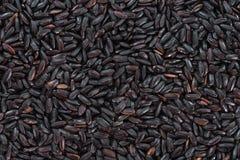 Riz noir (pour l'usage comme fond d'image ou comme texture) Photo stock