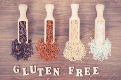 Riz noir, rouge, brun et blanc sur le scoop en bois, concept gratuit de nutrition de gluten Images stock