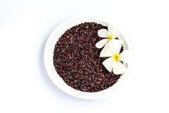 Riz organique de baie de riz sur le fond blanc Image stock