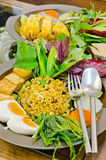 riz Remuer-frit avec le cari vert Image libre de droits