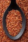 Riz rouge à grain long photographie stock libre de droits