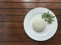 Riz thaïlandais simple du plat blanc décoré de l'herbe verte de feuille Images stock
