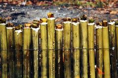 Riz visqueux rôti dans les joints en bambou Photos libres de droits