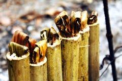 Riz visqueux rôti dans les joints en bambou Images stock