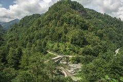 Rize, double bridge, çifte koprü Royalty Free Stock Photography
