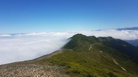 Dreamy sea of clouds over mountains in Blacksea Karadeniz region, Rize Turkey Royalty Free Stock Photos