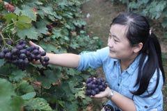 Rizhao Shandong: ο αγροτικός τουρισμός παίρνει πιό pupular Στοκ Φωτογραφίες