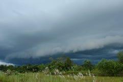 Rizière en Thaïlande avec le fond foncé de nuage de pluie photos libres de droits