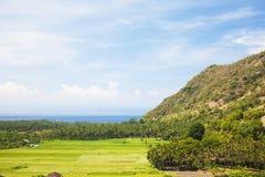 Rizière et côte, Amed, Bali est, Indonésie photos libres de droits
