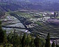 Rizières en terrasse Chine du sud Photos stock