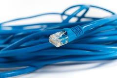 RJ45有缆绳的插座互联网连接的 库存图片