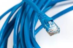 RJ45有缆绳的插座互联网连接的 免版税库存图片