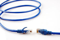 RJ-45 broadband cable. Close up of broadband cable RJ-45 with white background stock photography